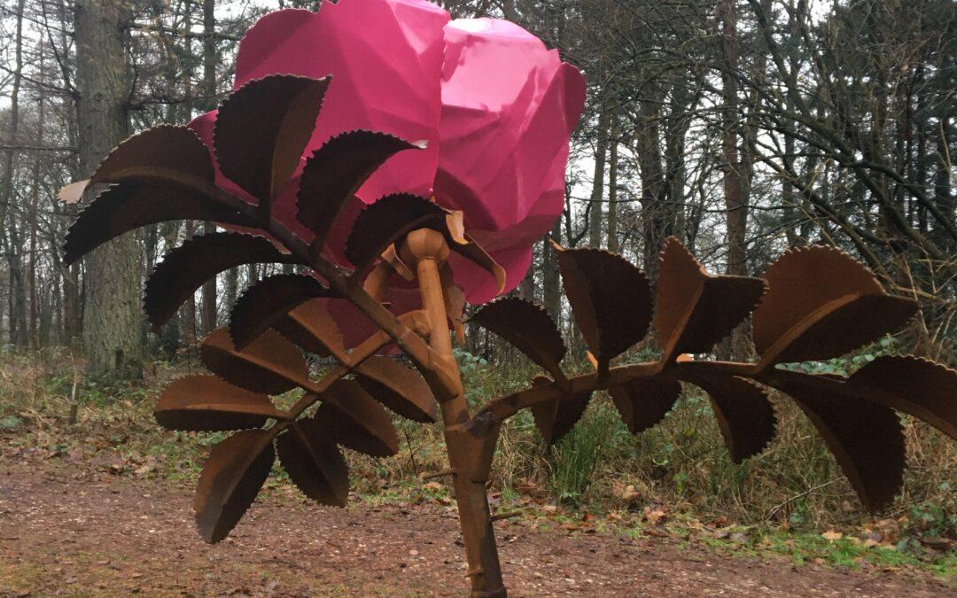 Endnu en blomst til 'mangfoldigheden' ved Kunstcentret Silkeborg Bad