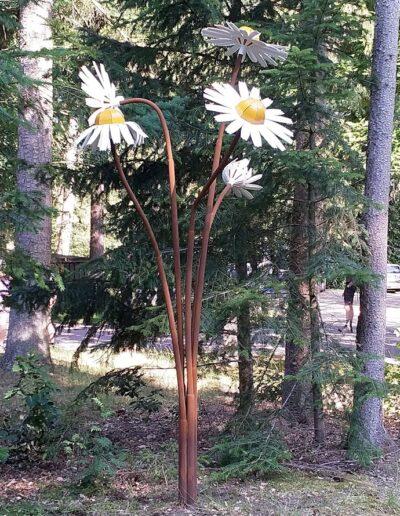Kamille blomst kunstcentret Silkeborg Bad